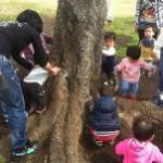 桜の木の下で(´∀`) 根っこはザラザラ?ゴツゴツ?